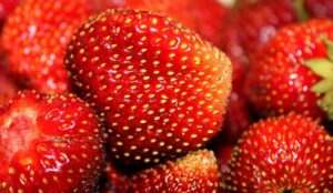 Strawberry seeds on the fruit