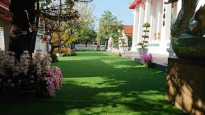 Garden with a green lawn